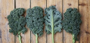 kale-supealiment-chou-vert-benefices-nutrition